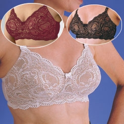 Lace All Over Bra #779